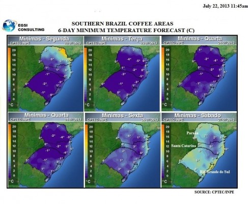 Coffee frost forecast
