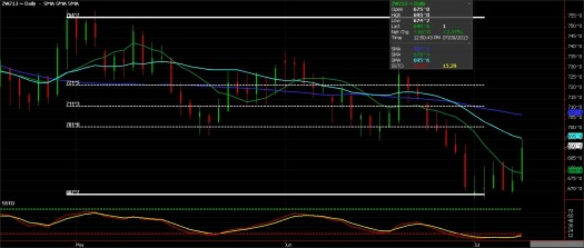 Ags - Wheat Futures, July 2013