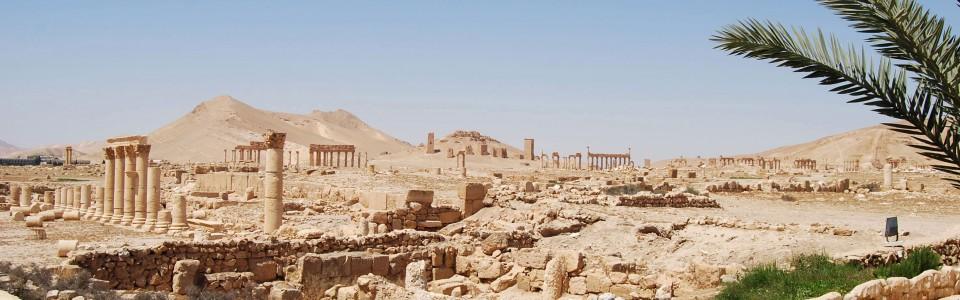 Palmyra Syria - Oil Fields
