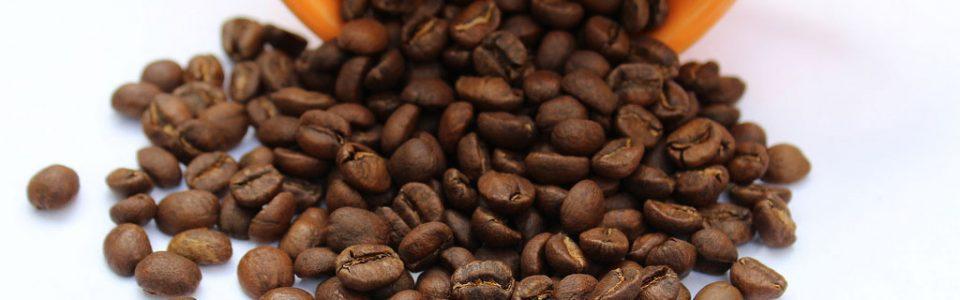 coffee futures fundamental